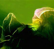 la fee Verte by Michael B.Sky