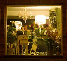Home Shop Window by Nigel Bangert