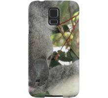 Young Koala, Australia Zoo, Queensland, Australia. Samsung Galaxy Case/Skin