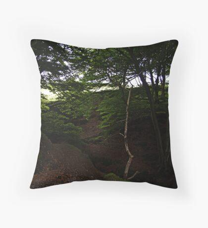 Perpetual (Ramsbottom)  Throw Pillow