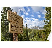 Hiking Trails Poster
