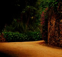Road to Freedom-Quinta da Regaleira by Wayne Cook