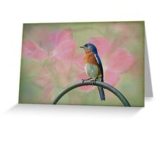 Bluebird & Roses Greeting Card