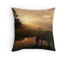 Sunrise in Cades Cove Throw Pillow