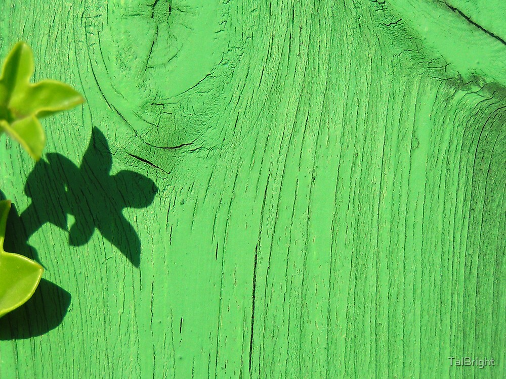 Green Shadow by TalBright