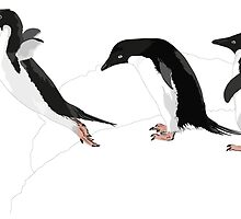 Illustration - Adelie penguins jumping - Birds by MLOR
