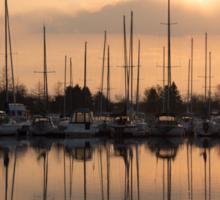 Pale Gold Sunrise With Yachts  Sticker