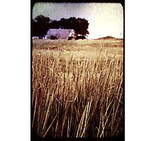 Hazy Days of Summer Photographic Print