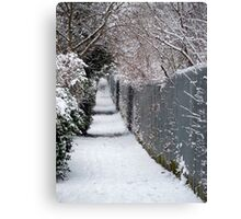 Almost Narnia! Canvas Print