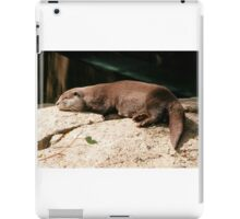 Water Otter, Canberra Zoo, Australia. iPad Case/Skin