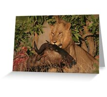 Lion Kill Greeting Card
