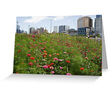 Melbourne flowers Greeting Card