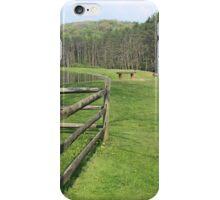 Beaver Creek Pond iPhone Case/Skin