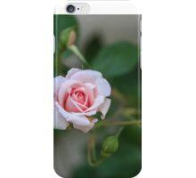 Cécile, the  Miniature Beauty iPhone Case/Skin