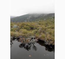 Tarn above Crater Lake, Cradle Mountain, Tasmania, Australia. Unisex T-Shirt