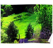 Hillside. Poster