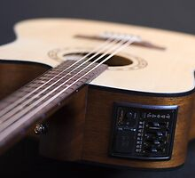 Takamine Controls by Irena Hayes
