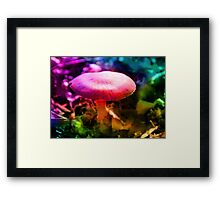 Trippy Nature - Colorful Mushroom  Framed Print