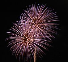 Fireworks 63 by greg1701