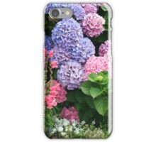 Glorious Hydrangea Bush  iPhone Case/Skin