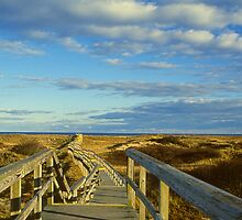 Boardwalk to the Sea by StephenPrunier