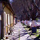 small village flair by Daidalos