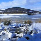 Lake Bala in Winter by Phil Brown