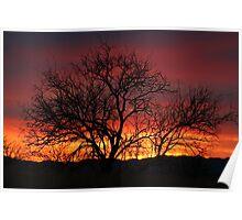 Sunset In The Borderland Desert Poster