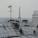 paris rooftops by Florian Verhein