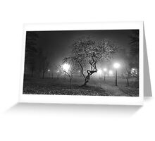 Night fog in the park. BW. Greeting Card