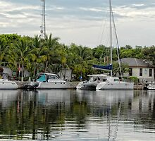 Key Largo Reflections by Colleen Drew