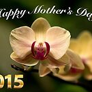 2015 Happy Mother's Day Card by imagetj