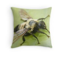 robber bee fly Throw Pillow