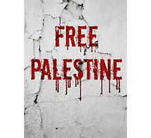 Free Palestine - painted Photographic Print