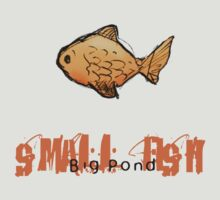 Small Fish Big Pond by ouse