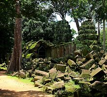 Ta Prohm Temple VII - Angkor, Cambodia. by Tiffany Lenoir