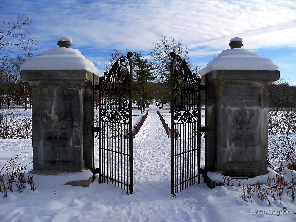 Behind the Open Gate by Brian Gaynor