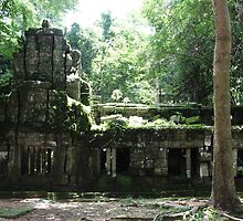 Ta Prohm Temple VIII - Angkor, Cambodia. by Tiffany Lenoir
