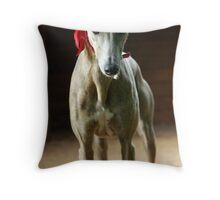 The Red Baroness Throw Pillow