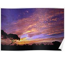 Madura Sunrise Poster