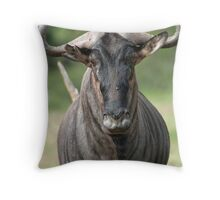 Wildebeest stare Throw Pillow