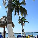 Costa Maya, Mexico. by Sandy Sparks