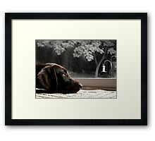 Missing You.... Framed Print