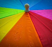 The Umbrella by Charles Plant