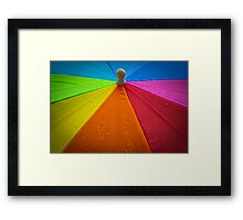The Umbrella Framed Print