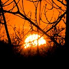 the sun goes down by satterflOw