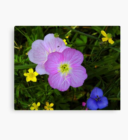 Wildflower Collection With An Ant Canvas Print