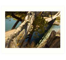 The Love Tree over 360 bridge Art Print