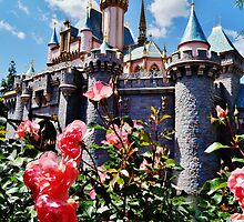 Castle Roses by rachelgracey