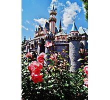 Castle Roses Photographic Print